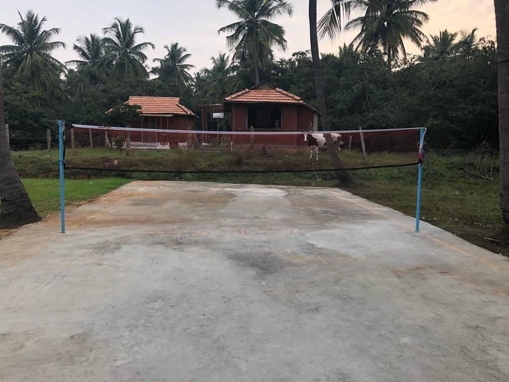 Cowboys Resort in Bidadi
