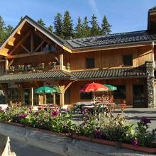 Chalet Hotel Vaccapark in Le Biot