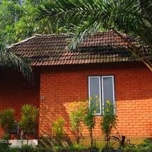 Chaliyar Palm Ghats in Kakkadampoyil