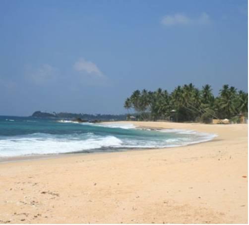 Dalawella Beach Resort in Denuwala