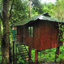 Honeyrock Resorts in Thamarassery