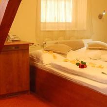 Hotel Francis in Hazlov