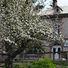 Hôtel Edelweiss in Saint-blaise