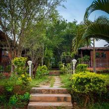 Jamboree Creek Yoga in Goa