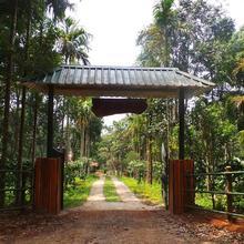 Orange Wood Resort in Thamarassery