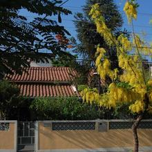 Recanto Casa e Jardim in Pavuna