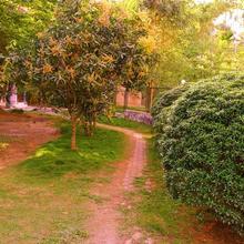 Sanjeevani Resort in Ambalavayal