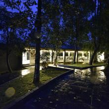 Sattva-The Awakening Garden in Kakkadampoyil