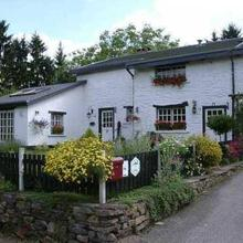 Shamrock Guesthouse in Sprimont
