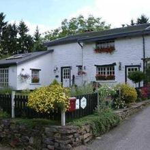Shamrock Guesthouse in Bergeval