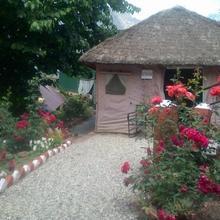 The Chardham Camp Joshimath in Ghangaria