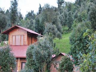 The Misty Mountains Retreat in Jhaltola