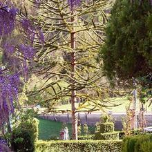 Villa Iris in Magliano