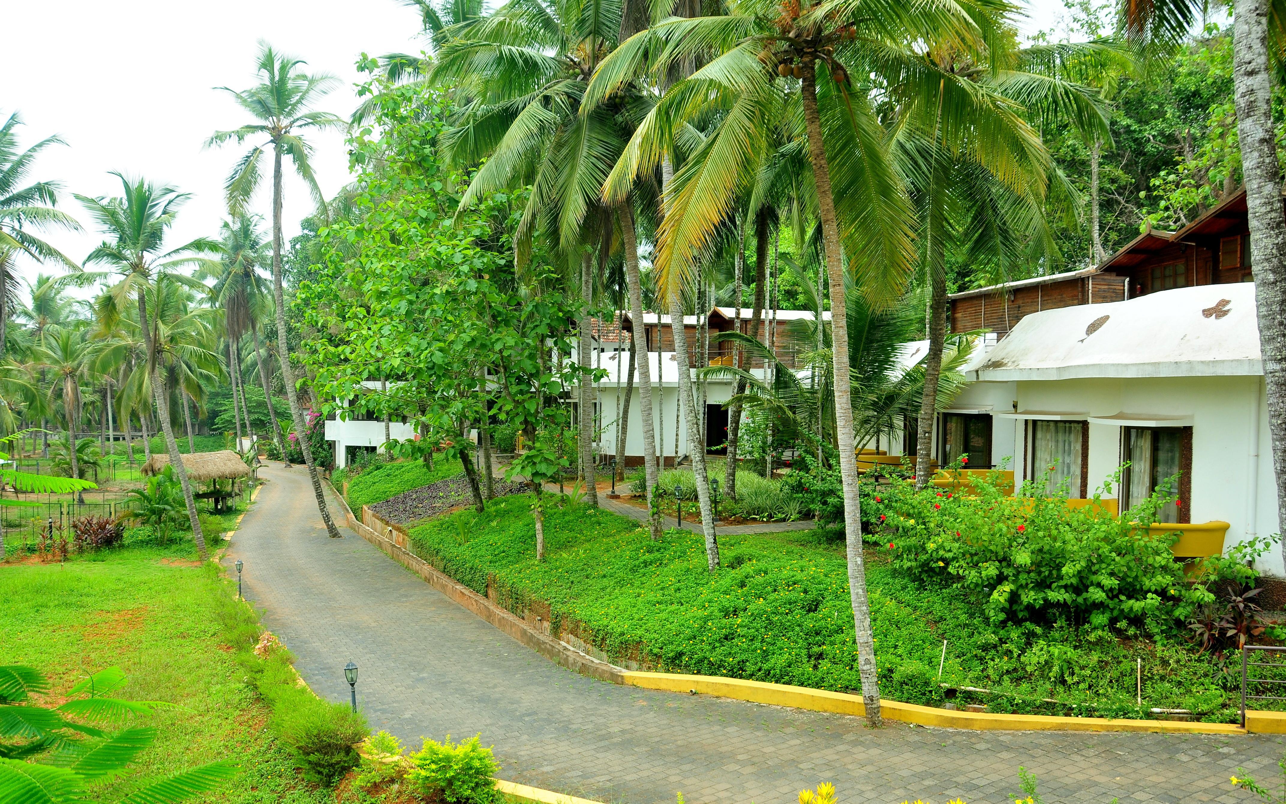 Palette - River Roost Resort Deluxe