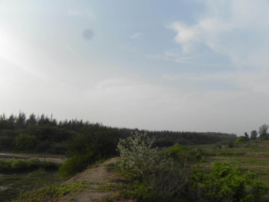 Alborze's Golwala Bunglow in Umargām