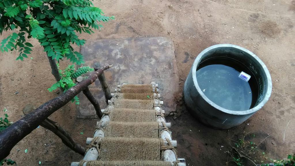 Aurobeach cottage in Auroville