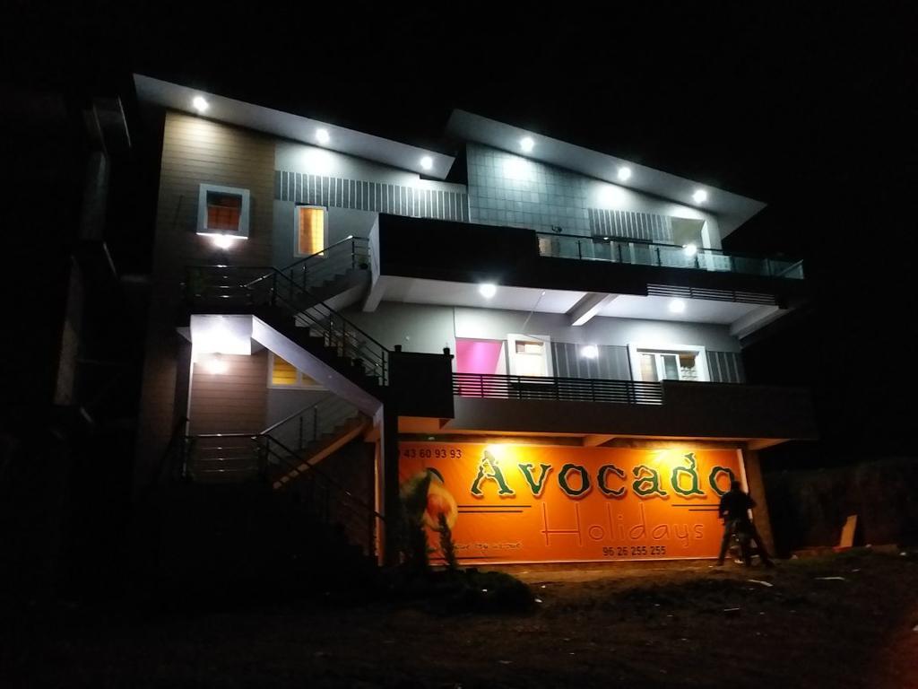 Avocado in Ooty