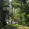 Blue Bells Valley Resort in munnar