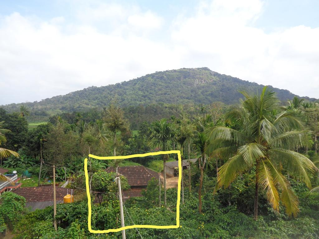 Coorg Blue Home in Ponnampet