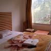 Hotel Bharmour View in brahmaur