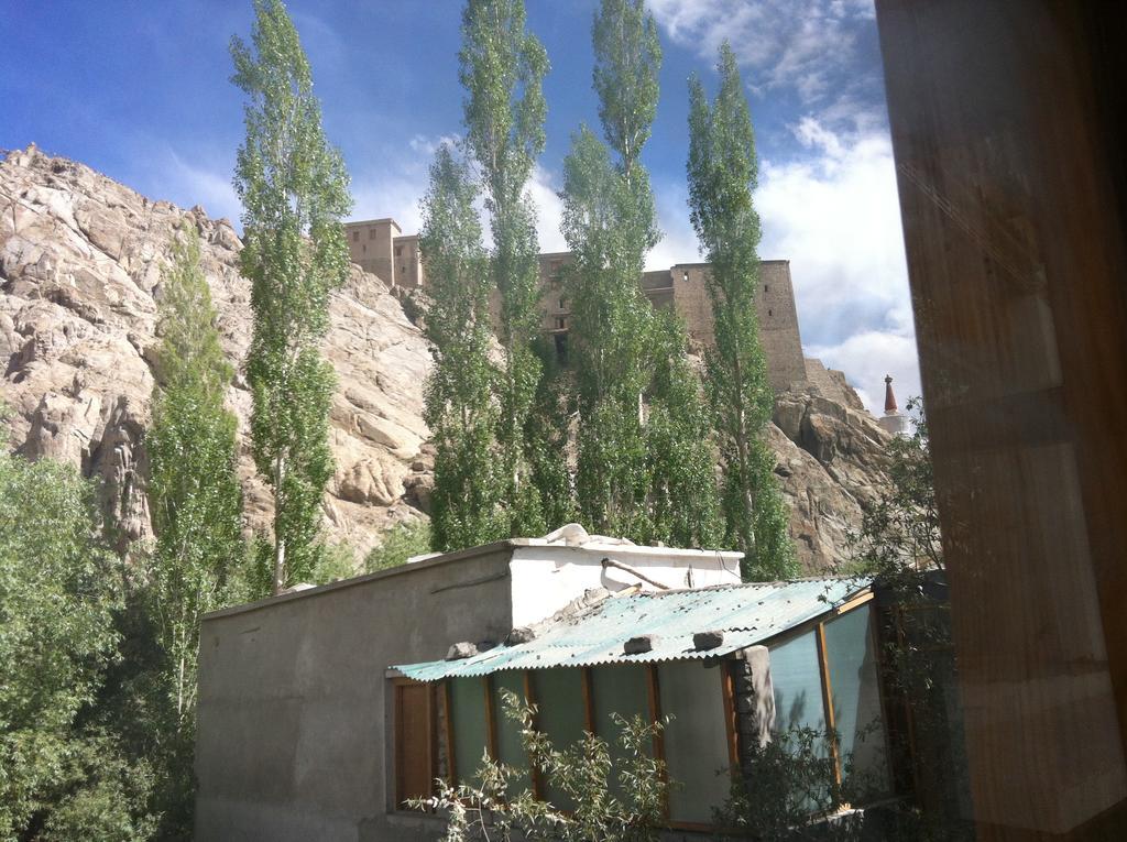 Hotel Himalaya Villa in leh