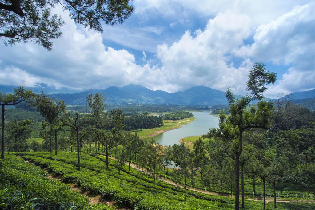 Mount View Munnar in dalhousie