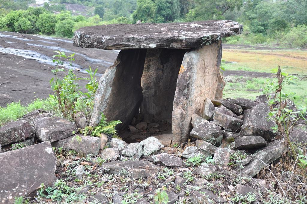 Kadampil Farm House in Munnar