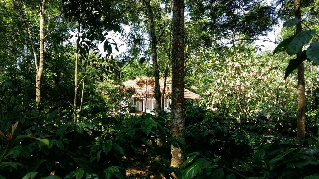 Leisure Vacations Whispering Woods in Madikeri