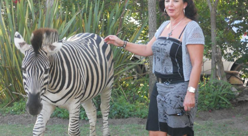 Mahlangeni Boutique Game Reserve in Plettenberg Bay