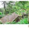 Mayapott Plantation Villa in thekkady