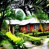 Mechilingma Homestay (double Bedded Room) in Kalimpong