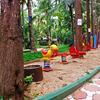 Parumpara Resort in kushalnagar