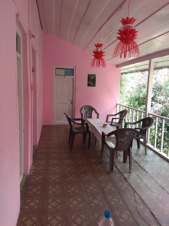 Pink House Cafe in Kasol