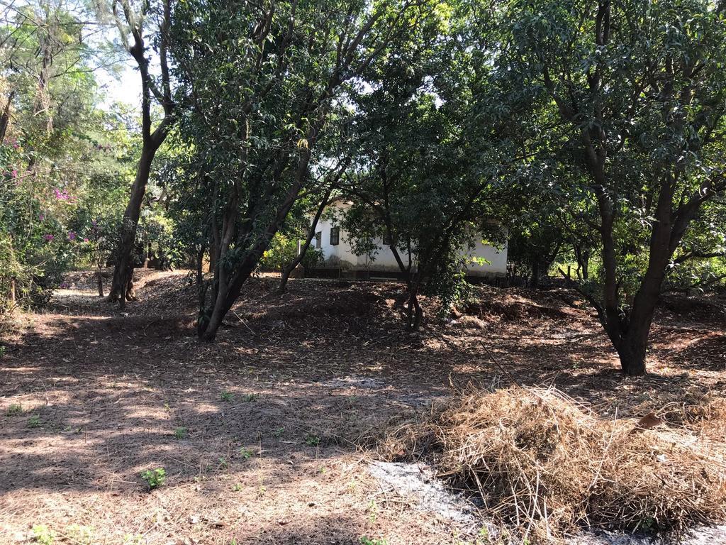 Pranay Farms - Jungle Farm House at Karjat in Chinchavli