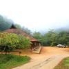 Rain Country Resort in wayanad