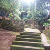 Soochipara Resort in Wayanad