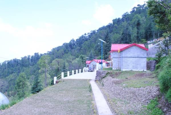 Village Live In Resort Chail in chail