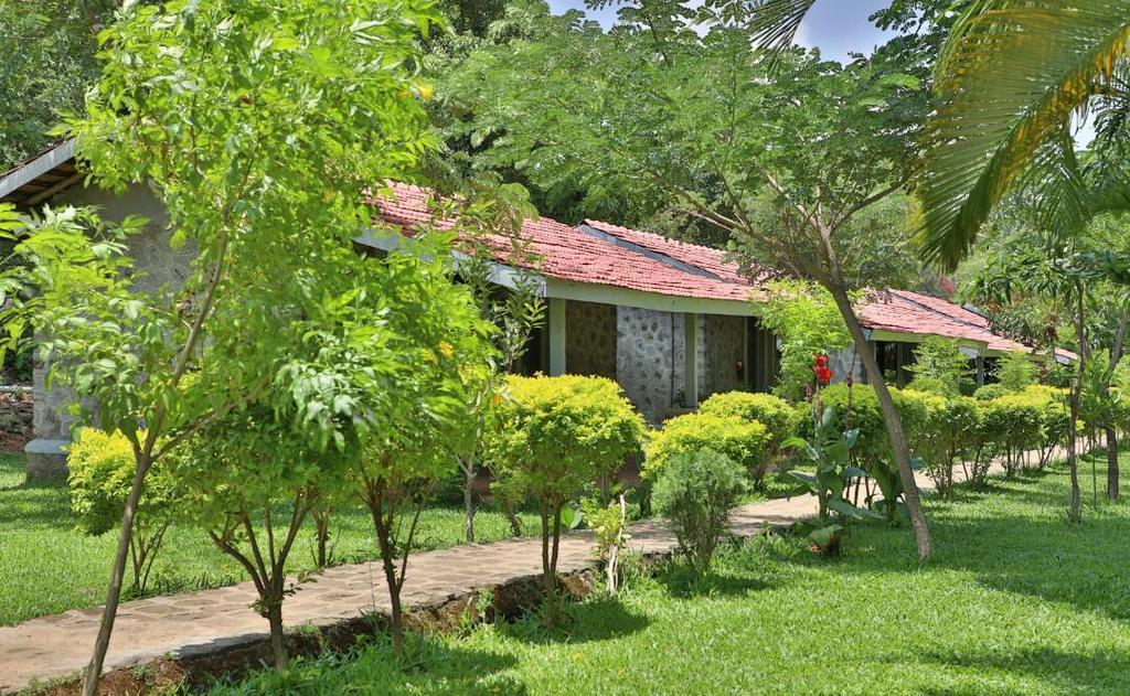 Wanderlust Resort in Bhandardara
