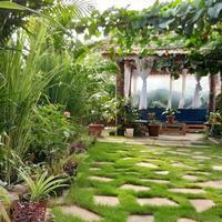 Villa Green Mango in Mapusa
