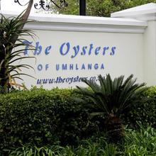 503 Oyster Schelles in Durban