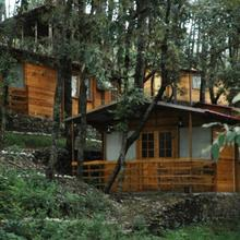 Aamod At Shoghi in Shimla