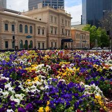 Adina Apartment Hotel Adelaide Treasury in Adelaide