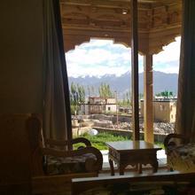 Adu's Eternal Comfort in Ladakh