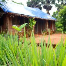 Aikya Organic Farm in Pondicherry