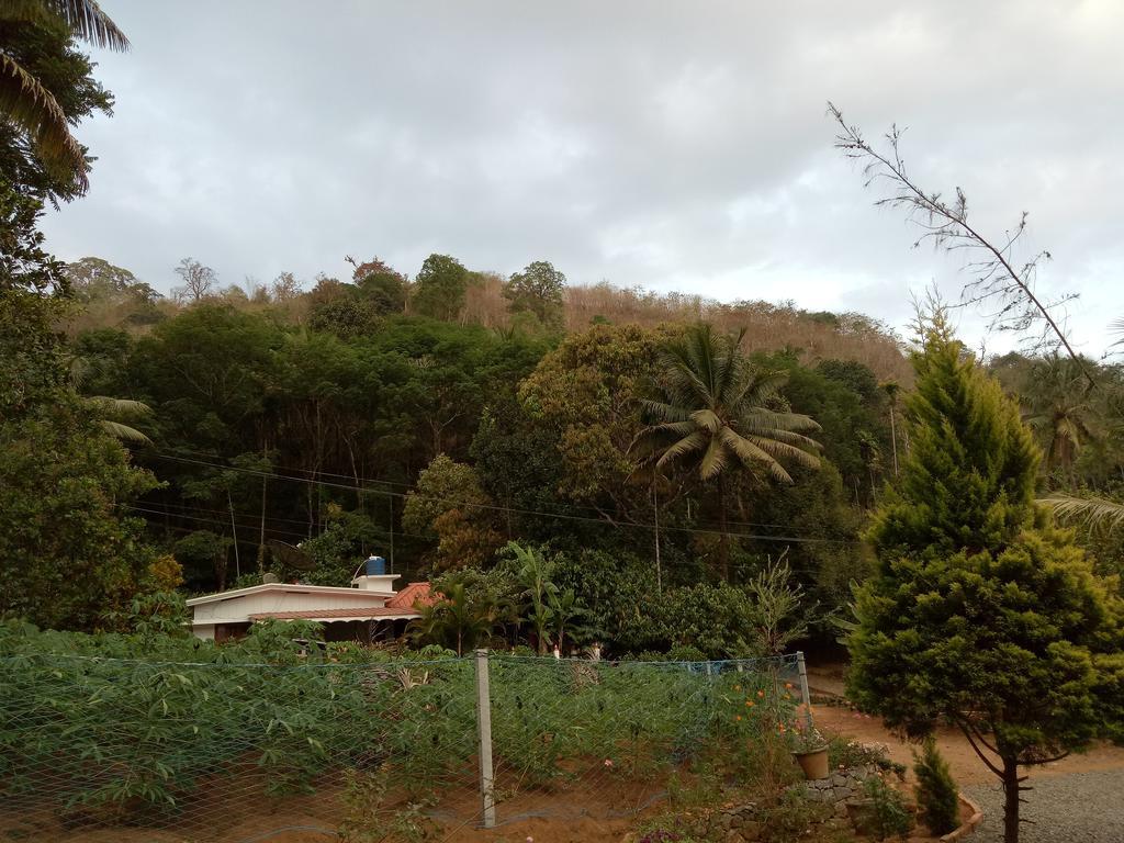 Akma homestay in Idukki