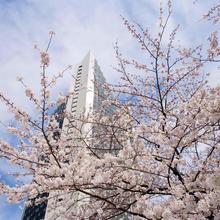 Ana Intercontinental Tokyo in Tokyo