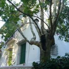 Apartamentos Los Manueles in Alozaina