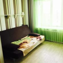 Apartment On Krasnoarmeyskiy 8 in Tula