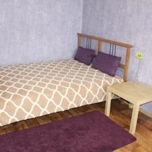 Apartment Revolyutsionnaya 12 in Ufa