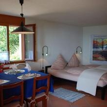 Apartment Studio Al Vigneto in Comano